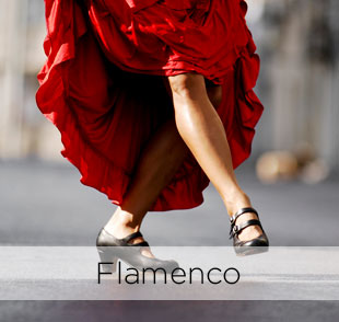 Learn spanish in spain Flamenco